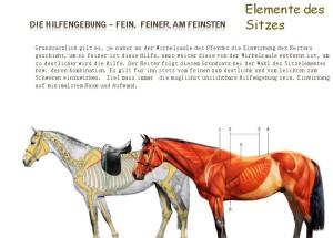 Pferd_21x15